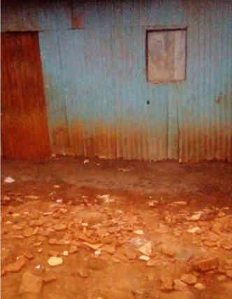 Ein-Fußboden-für-die-Sweet-Angels-School-Artikelbild6