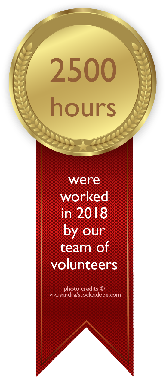 voluntary work medail